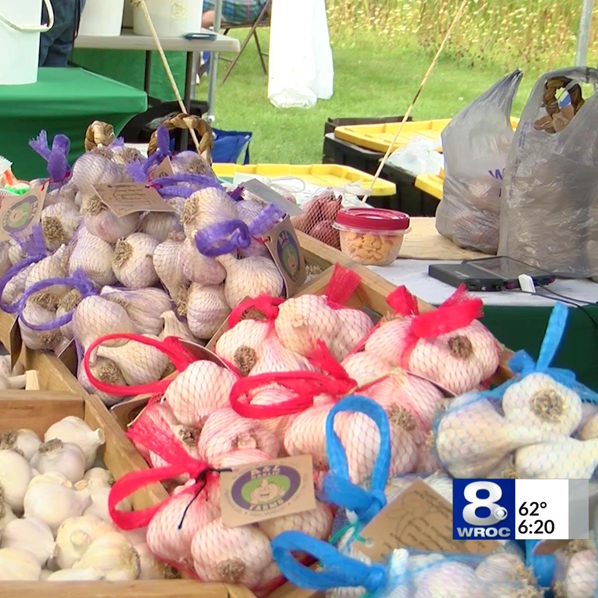Garlic Festivals - Rochester Garlic Festival