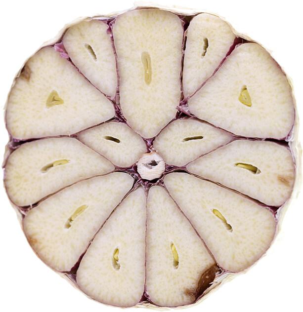 Garlic Varieties - Hardneck Garlic